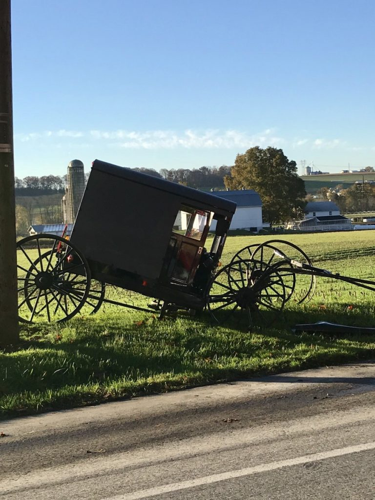 Horse and Buggy Accident in Eden Township